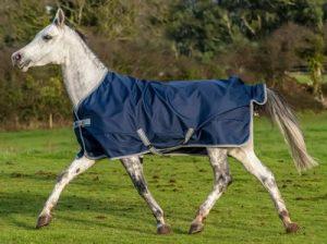 Die Regendecke – Der Schutz für dein Pferd bei schlechtem Wetter