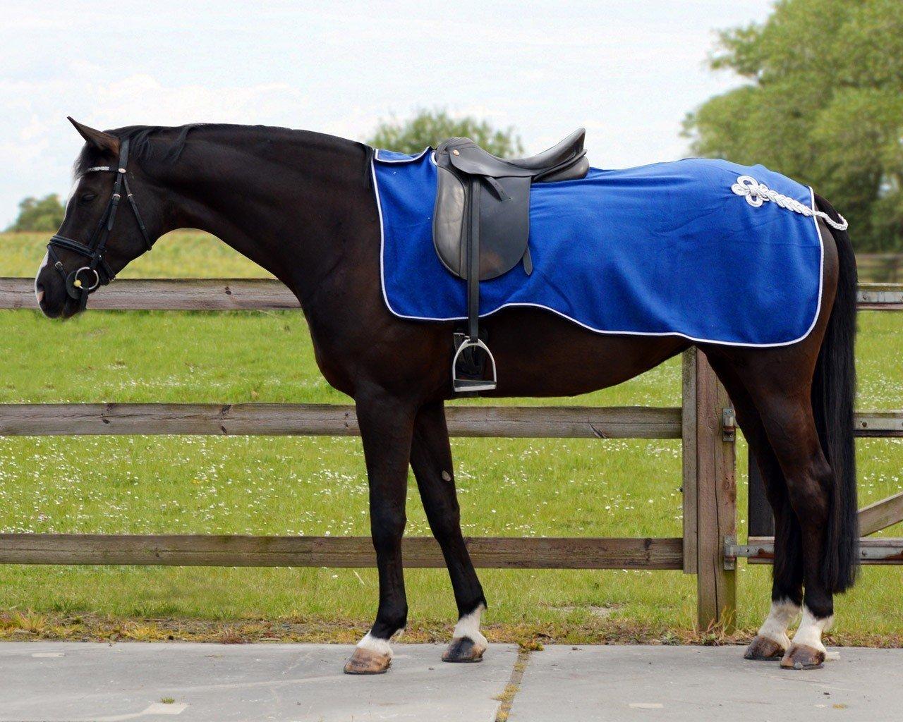 Einen Nierendecke schützt die Nieren deines Pferdes vor Witterungseinflüssen