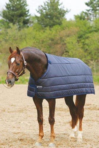 Pferd mit Unterdecke