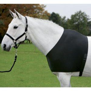 Schulterschutz und Brustschutz gegen kahle Stellen an deinem Pferd