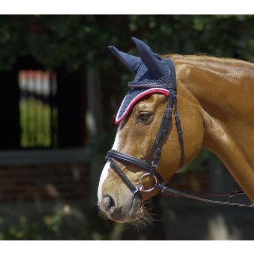 Diese Ohrenhaube schützt dein Pferd vor Insekten und Lärm
