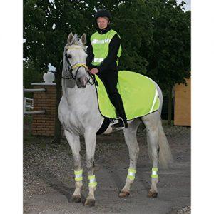 Reflex, Leucht bzw. Reflektor Decke für Sicherheit im Winter auf deinem Pferd